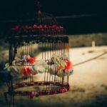10 citações de escritores que farão de você um fotógrafo melhor (10)