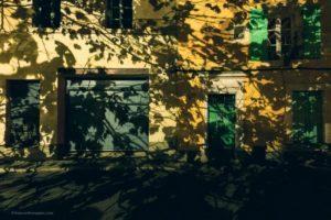 10 citações de escritores que farão de você um fotógrafo melhor 7